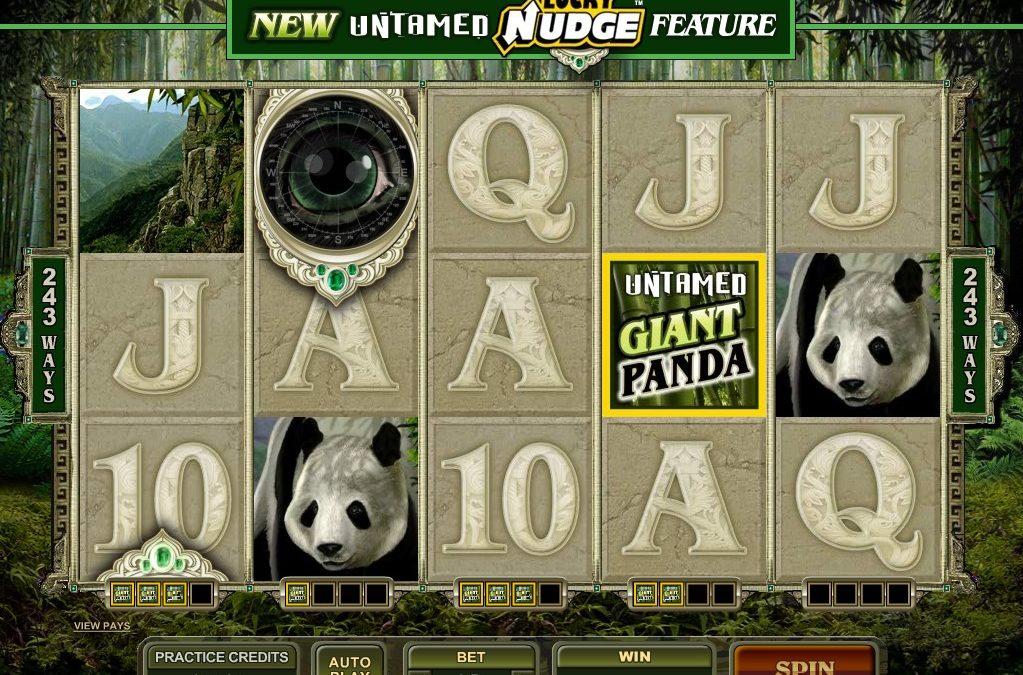 Untamed: Giant Panda